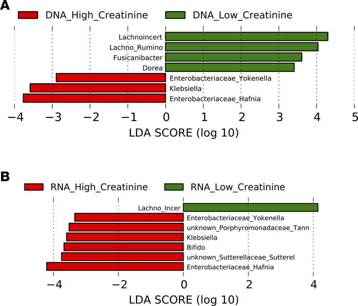 DNA comparison of cirrhotic patients with and without renal dysfunction....