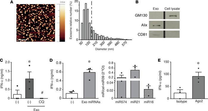 Exosomal microRNAs from HaCaT-conditioned media activate IFN-α secretion...