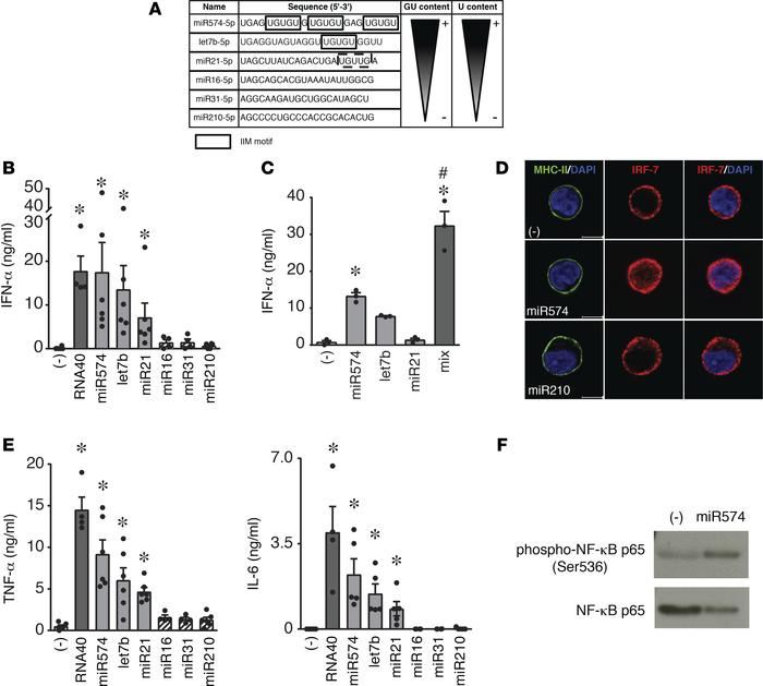 Synthetic IIM microRNAs activate human pDCs to secrete IFN-α and proinfl...