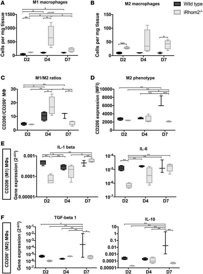 M1/M2 macrophage ratios and cytokine expression within the first week af...