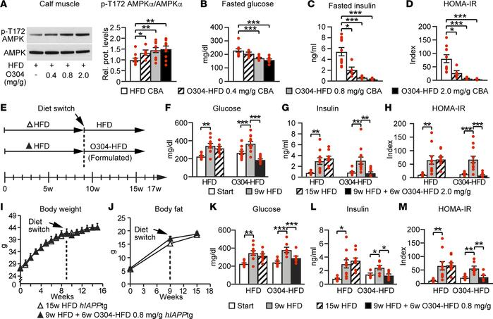 O304 dose-dependently averts dysglycemia in diet-induced obese mice and ...