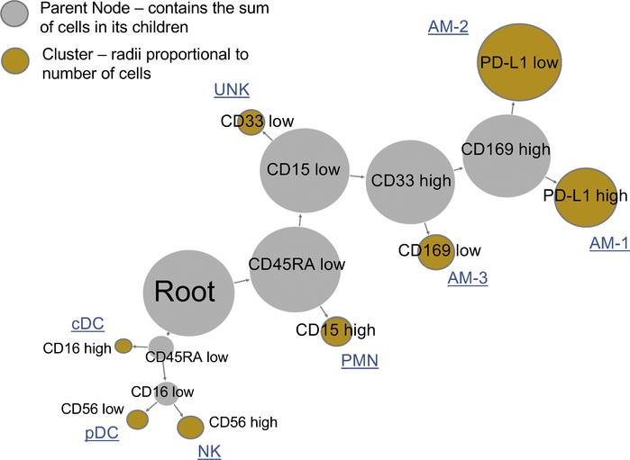 Unsupervised clustering by X-Shift identifies alveolar macrophage (AM) s...
