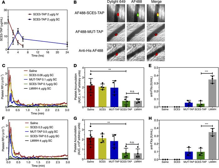 SCE5-TAP targets venous platelets and inhibits venous thrombosis in vivo...